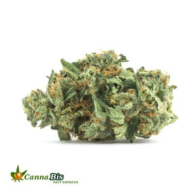 Lemon Walker OG Online Order