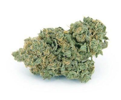 Purple Punch AAA flowers, quality medical marijuana flower